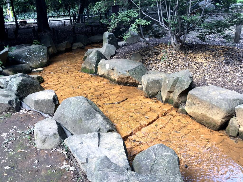 和田堀公園の川
