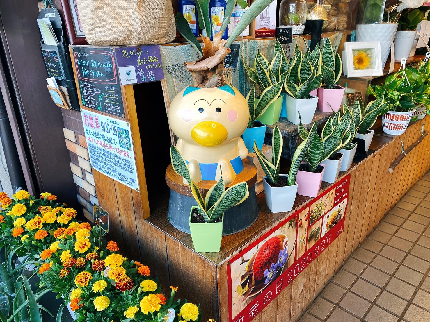 【大森】90年間、大森を彩ってきた老舗のお花屋さん大花園