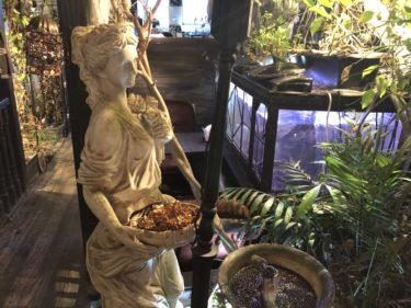 【高円寺】物語喫茶室エセルの中庭でファンタジーの世界に浸る