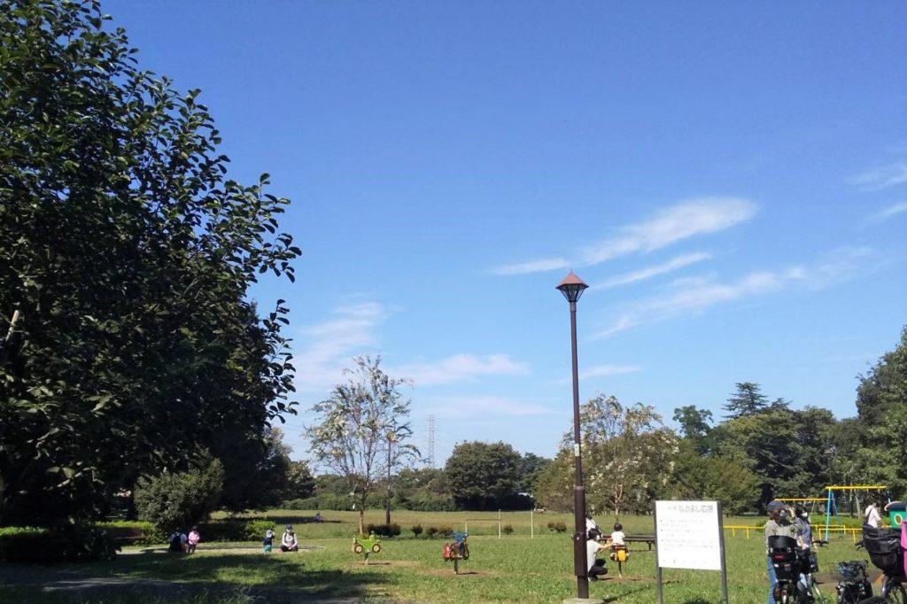 ゆりの木広場