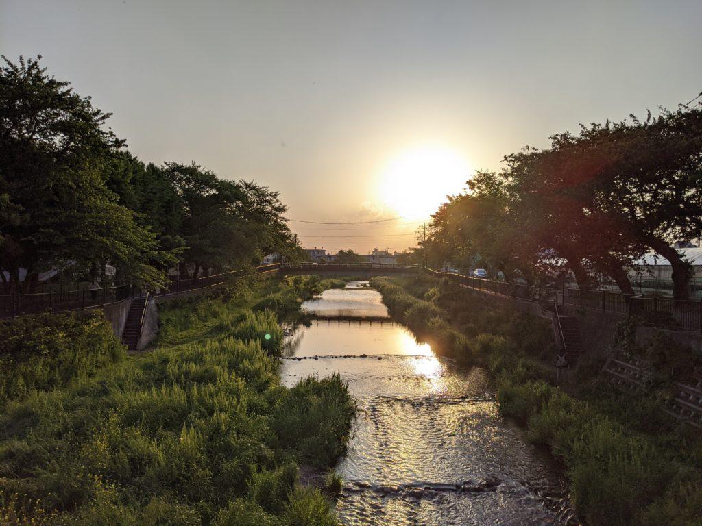 野川の夕日