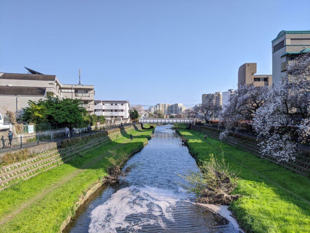 野川遊歩道