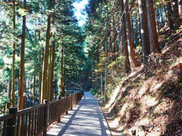御岳山から鬼殺隊の出身地をはしごするハイキングコース